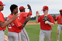 GCL Nationals left fielder Justin Connell (11) high fives teammates Juan Evangelista (2) and Juan Pascal (19) after the second game of a doubleheader against the GCL Marlins on July 23, 2017 at Roger Dean Stadium Complex in Jupiter, Florida.  GCL Nationals defeated the GCL Marlins 1-0.  (Mike Janes/Four Seam Images)
