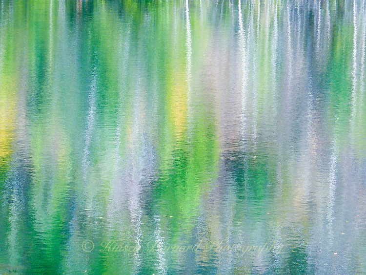 &quot;POND PALETTE&quot;<br />