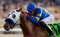 07-20-18 Osunitas Stakes