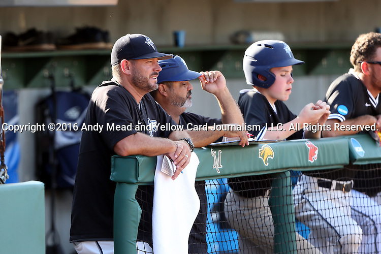 28 May 2016: Nova Southeastern head coach Greg Brown (left) with assistant coach Eric Cruz (second from left). The Nova Southeastern University Sharks played the Franklin Pierce University Ravens in Game 3 of the 2016 NCAA Division II College World Series  at Coleman Field at the USA Baseball National Training Complex in Cary, North Carolina. Nova Southeastern won the game 4-3 in twelve innings.