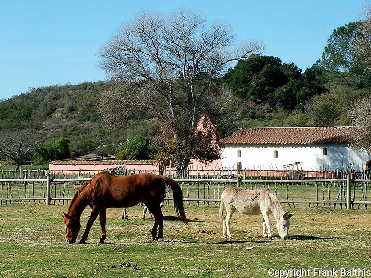 Horse and donkey at La Purisima Mission SHP