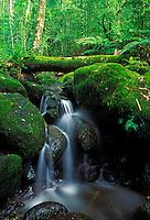 A tranquil waterfall can be seen along the Maunawilli trail near windward Oahu.