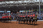 Canadian Mounties performing on horseback Vancouver British Columbia Canada
