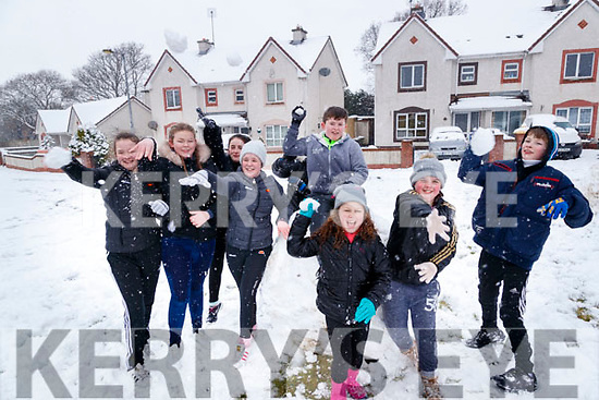 Amy Griffin, Chelsea Kelliher, Kelsey Keane, Aoife Griffin, Charlie Norman, Nathan O'Sullivan, Michael Gallaher, Kerri Lane and Cora O'Driscoll enjoying the snow in Stokers Lawn, Listowel on Friday.