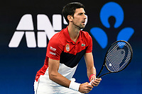 11th January 2020; Sydney Olympic Park Tennis Centre, Sydney, New South Wales, Australia; ATP Cup Australia, Sydney, Day 9; Serbia versus Russia;  Novak Djokovic versus Daniil Medvedev; Novak Djokovic of Serbia prepares to receive serve from Daniil Medvedev of Russia - Editorial Use