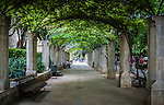 King's Garden, at La Seu Cathedral, Palma de Mallorca, Spain