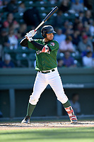 First baseman Pedro Castellanos (24) of the Greenville Drive bats in a game against the Charleston RiverDogs on Sunday, April 29, 2018, at Fluor Field at the West End in Greenville, South Carolina. Greenville won, 2-0. (Tom Priddy/Four Seam Images)