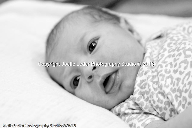 Joelle Leder Photography Studio © 2013