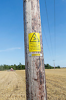 Direct drilling OSR around electricity poles - Lincolnshre, August