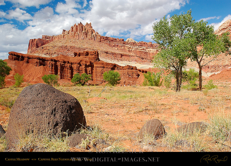 Castle Meadow, Capitol Reef National Park, Utah