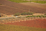 Israel, Shephelah, a view from Tel Lachish