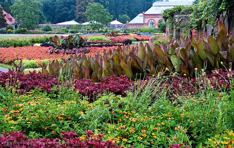 Biltmore Estate Summer Gardens | kaye m debona photography
