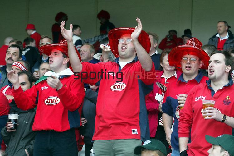 Llanelli v Leicester.Heineken Cup semi final.The City Ground Nottingham.Scarlet fans