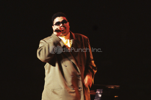 Heavy D pictured performing at Madison Square Garden in New York City in 1994. © RtnJackson / MediaPunch