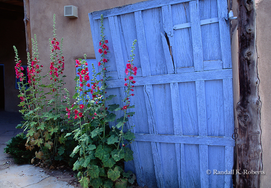Hollyhocks and blue door, Santa Fe, New Mexico