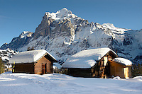Alpine slopes with snow and Swiss Chalet  looking towards the Wetterhorn Mountain