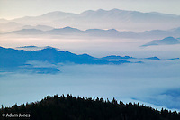 Layered moutain ridges at sunrise, southern Appalachian Mountains, from Clingmans Dome, Great Smoky Mountains National Park, TN/NC