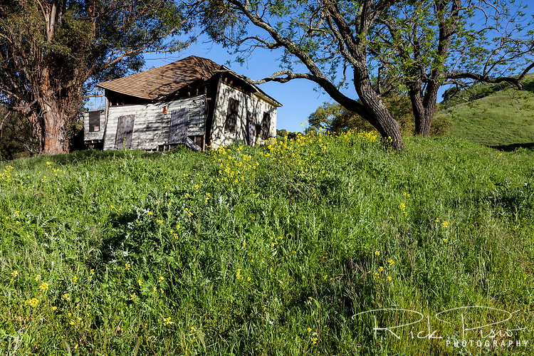 An abandoned ranch house within the boundaries of Morgan Territory Regional Preserve in California's eastern Contra Costa County.