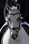 Class 8. British Dressage. Brook Farm Training Centre. Essex. 08/06/2019. ~ MANDATORY Credit Garry Bowden/Sportinpictures - NO UNAUTHORISED USE - 07837 394578