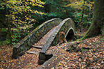 Waterfall And Stone Foot Bridge In The Scenic Old Man's Cave State Park Of Central Ohio, Hocking Hills Region In Autumn