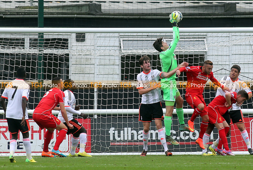 Fulham's Marcus Norman makes a fine save to foil a Liverpool attack - Fulham Under-21 vs Liverpool Under-21 - Barclays Under-21 Premier League Football at Motspur Park Training Ground, Surrey - 26/10/14 - MANDATORY CREDIT: Paul Dennis/TGSPHOTO - Self billing applies where appropriate - contact@tgsphoto.co.uk - NO UNPAID USE