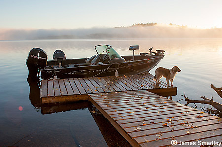 Boat at dock with dog