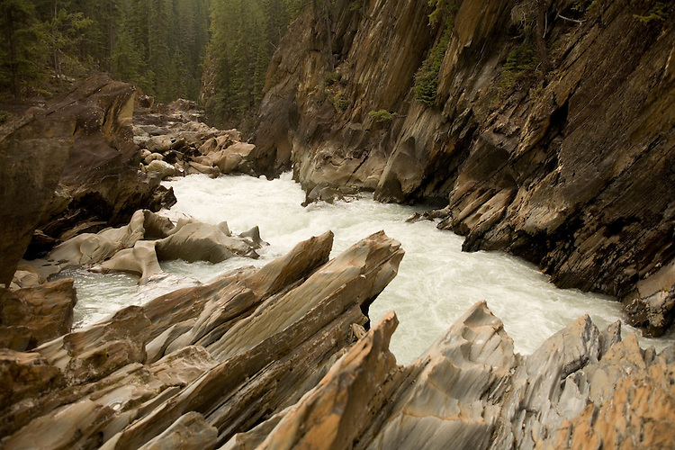 Eroded channels, chiselled pools of the rock gardens below Natural Bridge,  Yoho NP