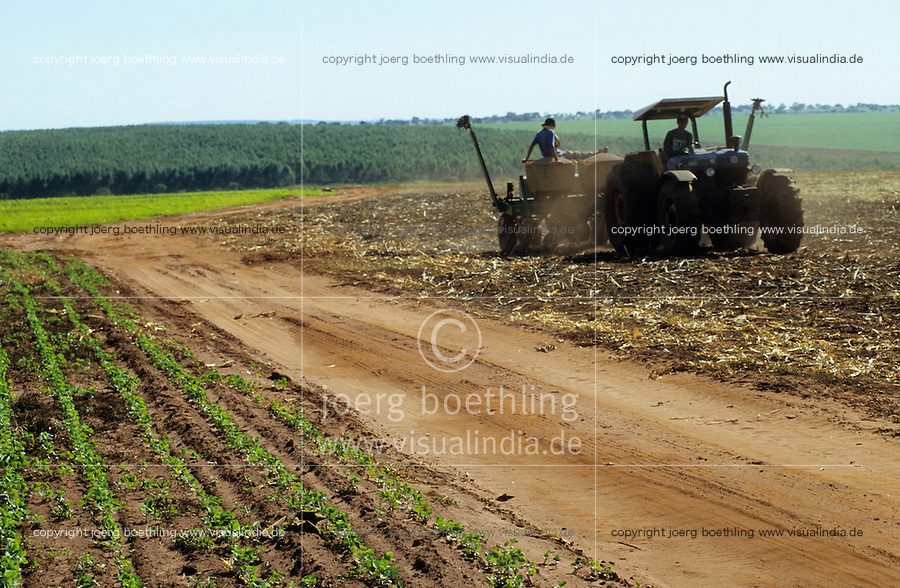 BRAZIL, state Sao Paulo, cultivation of soya bean as animal fodder and sugar cane for processing of sugar or bioethanol as biofuel , tractor plowing and sowing of soya after sugarcane harvest / BRASILIEN Bundesstaat Sao Paulo,  auf riesigen landwirtschaftlichen Flaechen wird Soja fuer Export als Viehfutter und Zuckerrohr u.a. zur Herstellung von Biosprit Ethanol oder Zucker angebaut , Pfluegen und Aussaat von Soya nach Aberntung von Zuckerrohr , Hintergrund Holzplantage mit Pinien