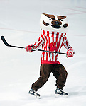 2010 Wisconsin Badgers Women's Hockey