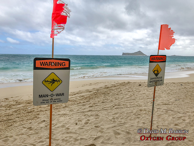 Warning Signs, Waimanalo Beach