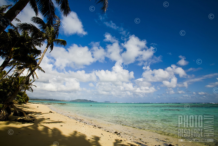 Beach with palms, clear blue water over coral and sand, with a view of Kaneohe Peninsula