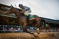 LEXINGTON, KY - OCTOBER 08: Romantic Vision #11 with Brian Hernandez aboard wins the Juddmonte Spinster Stakes at Keeneland Race Course on October 08, 2017 in Lexington, Kentucky. (Photo by Alex Evers/Eclipse Sportswire/Getty Images)