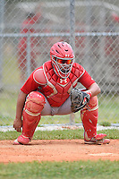 St. Louis Cardinals catcher Jesus Montero (22) during a minor league spring training intrasquad game on March 28, 2014 at the Roger Dean Stadium Complex in Jupiter, Florida.  (Mike Janes/Four Seam Images)