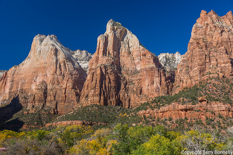 Zion National Park, UT<br /> Court of the Patriarchs tower above Zion Canyon