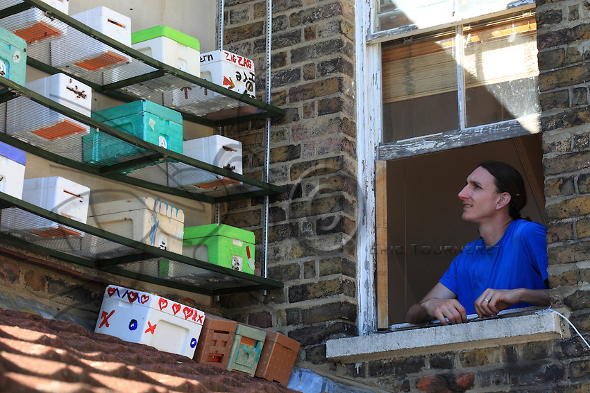 Mister Khox observing his small, queen breeding hive on the roof of his London home near Canada City.