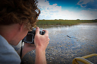 Photographer shoots alligator in the Everglades from Miccusukee airboat.