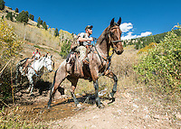 Outdoor Life Editor Andrew McKean, Mike Stock, and guide Greg Kriese with Trefren Outfitters return to camp after hunting mule deer on Greyback Ridge in the Hoeback Drainage of Wyoming Region H, outside of Alpine, Wyoming, September 26, 2015.<br /> <br /> Photo by Matt Nager