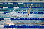 BIRMINGHAM, AL - MARCH 11: Hannah Peiffer of Queens University races to a first place finish in the 200 yard backstroke during the Division II Men's and Women's Swimming & Diving Championship held at the Birmingham CrossPlex on March 11, 2017 in Birmingham, Alabama. (Photo by Matt Marriott/NCAA Photos via Getty Images)