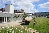 GERMANY, Berlin, Tilapia fish farm of start up ECF, the fish farm is combined with green houses to cultivate vegetables irrigated with sewage water from the fish ponds / DEUTSCHLAND, Berlin, Tilapia Gemuese- und Fischfarm des start-up Unternehmens ECF auf dem Gelaende der ehemaligen Schultheiss Malzfabrik, mit dem naehrstoffhaltigem Abwasser der Fischtanks wird Basilikum im Gewaechshaus bewaessert, Aquaponic System, als Hauptstadt Barsch werden Fisch und Basilikum in Berlin ueber Rewe und Metro lokal vermarket, , Hintergrund Schornsteine der alten Malzfabrik
