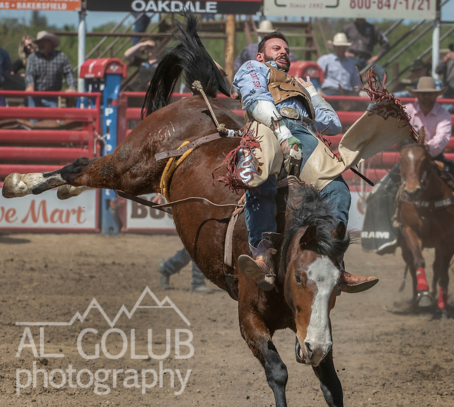Bareback rider Cody Kiser from Carson City, Nevada at the 68th annual Oakdale Saddle Club Rodeo on Sunday, April 14, 2019.  (Al Golub/Record Photo)
