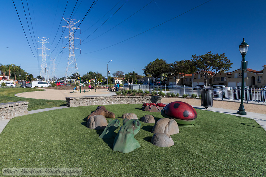 Frogs, a lady bird beetle (ladybug), and an ant climbing structure on artificial turf at State Street Park, with power lines soaring overhead.