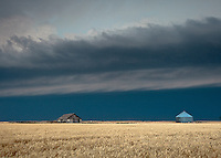 Thunderstorm Shelf Cloud Above Farm House & Grain Storage in a Yellow Wheat Field near Goodland, KS, June 15, 2012
