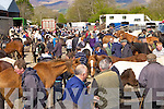 The large crowd at the Milltown Fair on Sunday