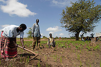 Uganda Kitgum , refugees of civil war between LRA and Ugandanian army return back to their villages after the peace negotiation , agricultural training by NRC norwegian refugee council / Uganda Norduganda Kitgum ,  Fluechtlinge des Buergerkrieg zwischen LRA und Regierungstruppen , kehren nach Friedensabkommen zurueck in ihre Doerfer, landwirtschaftliche Schulung durch NRC norwegisches Fluechtlingshilfswerk