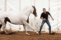 Cavalia performer Julien Beaugnon demonstrates a Liberté exercise with his horse Junior during a media preview on July 13, 2012. The horses of Cavalia arrived in San Jose, at their signature White Big Top, for performances through August.