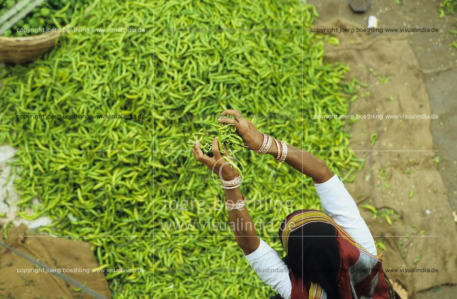 Südasien Asien Indien IND .Gewürze wie grüne Chilly  auf Markt in Bijapur -  Landwirtschaft Handel gewürzhandel Kolonialwaren Chillies Chilli Chillischote Chillischoten Peperoni Pepperoni Schote Schoten Cayenne Pfeffer Cayennepfeffer Paprika Gewürz Gewürze Curry scharf  indische Küche Speisen kochen essen verbrennen brennen würzen schärfen Schärfe indisch Inder grün grüne Farbe farbig xagndaz | .South Asia India .spices like chillies at market in Bijapur  - agriculture trade farming cultivation chilly capsicum cayenne pepper green color colour spice spices spicy hot indian cuisine curry food