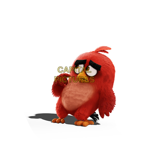 The Angry Birds Movie (2016) <br /> Red (Jason Sudeikis)<br /> *Filmstill - Editorial Use Only*<br /> CAP/KFS<br /> Image supplied by Capital Pictures