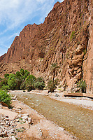 Picture of the Todgha River running through the Todra Gorge, Morocco, North Africa, Africa. This photo shows the Todgha River running through the spectacular Todra Gorge, a vast canyon with sheer towering cliffs looming over 150m on either side.
