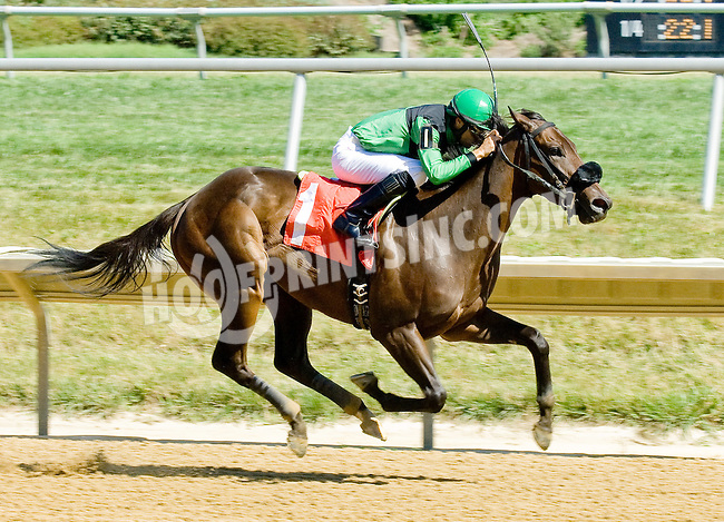 Compass Rock winning at Delaware Park on 7/25/12