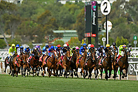 Melbourne Cup / race action<br /> 2017 Melbourne Cup horse racing, <br /> Flemington Racecourse, Melbourne, Australia. <br /> Tuesday 7 November 2017. <br /> &copy; Sport the library / Jeff Crow